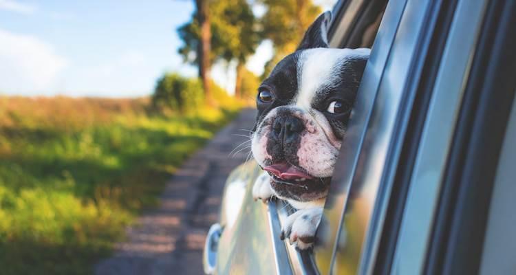 Autoverzekering duurder? Bespaar met een andere dekking